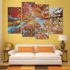UK Huge Autumn Forest Canvas Print Painting Pictures Art Wall Home Decor Gifts