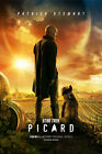 "Star Trek Picard Poster 12x18"" 24x36"" 32x48 TV Series 2019 Patrick Stewart Prinr on eBay"