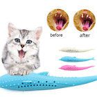 Cat Self-Cleaning Toothbrush-With Catnip Inside Interactive Cat Dental Toys Hot