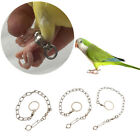 Pet Bird Leash Parrot Foot Chain Stainless Steel Training Anklet Ring