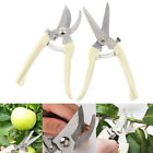 Cutter Pruning Garden Scissor Stainless Steel Cutting Tools Home Tools Anti-s Pz