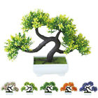 Decorative Artificial Plants Tree Bonsai Greeting Pine Potted Home Accessories