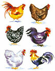 6 Different Barnyard Rooster Fowl Set Select-A-Size Ceramic Waterslide Decals Bx image