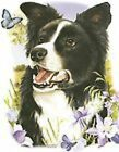 Border Collie Tamara Burnett T Shirt Pick Your Size