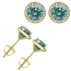 1 Carat Blue Diamond Halo Solitaire Screw Back Martini Earrings 14K Yellow Gold