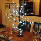 CHRISTMAS WHITE BLOSSOM LIGHT UP BONSAI TREE TABLE DECORATION OR OUTDOOR USE k/f