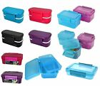 POLAR GEAR Clic-Tite Plastic Container Lunch Sandwich Food Box School