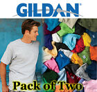 Mens 2 Pack Gildan Heavy Cotton T Shirts, Mens tShirts with over 45 Colours
