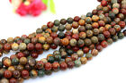 AAA Natural 4 6 8 10 12 14mm Multicolor Picasso Jasper Round Beads 15""