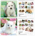 SQUARE/WALL CALENDAR 2015 (Month to View) Choice of KITTENS or PUPPIES