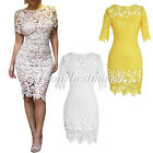 Women's Sexy Hollow Lace Shealth Knee Length Party Dress Plus Size 2 Colors