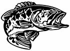 Bass Decal MD #5 Fishing Truck/Boat Vinyl Stickers