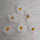 Wholesale white Silk Gerbera Daisy Flower Head Wedding Party Decoration1.77-2.3""
