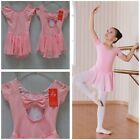 Kids Toddlers Girls Gym Ballet Dress Leotard Skirt Dance Tutu Costume Pink Blue