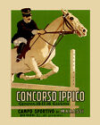 """Horse Competition Equestrianism Italian Sport 16""""X20"""" Vintage Poster FREE SH"""