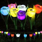 Tulip Flower LED Light Outdoor Yard Garden Path Way Landscape Lamp Solar Powered
