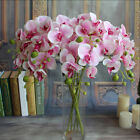 Silk Flower Simulation Restaurant Plant Butterfly Orchid Artificial Home DecorJR