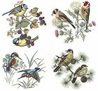 4 British Birds Select-A-Size Waterslide Ceramic Decals Bx  image