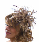 Taupe Nude Fascinator hat & brown highlight/choose any colour satin/feathers
