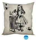 "ALICE IN WONDERLAND DESIGN COTTON FEEL CUSHION 18"" DECOR HOME ACCESSORY"