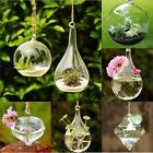 Hot Clear Glass Wall Hanging Vase Planter Terrarium Container Home Wedding Decor