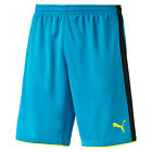 Puma Torwart Short Tournament 702196