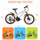 "20"" Mountain Bike Flying Pigeon Frame Shimano Hybrid Suspension Sports High Top"