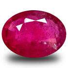 1.78 ct  Five-star Oval Shape (8 x 6 mm) Red Sapphire Natural Gemstone
