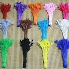 Wholesale 50pcs Natural Feather DIY Craft Trimmings Decor Lady Jewelry Accessory