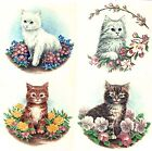 Cat Kitten Flower Garden Select-A-Size Waterslide Ceramic Decals Xx