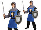 Boys Medieval Knight Costume Blue Guardsman Kids Fancy Dress Outfit
