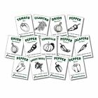 Salsa Garden Seeds Kit -13 Varieties Heirloom Non-GMO USDA Organic Veggie Herbs