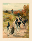 Bike Penny Farthing High Wheel Columbia Bicycle 16 X 20 Vintage Poster FREE S H