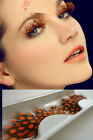 Fashion Sexy Feather False Eyelashes For Chirstmas Party Show Makeup Tool Gift