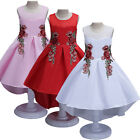 Flower Girls Princess Wedding Dress Elegant Embroidery Party Prom Gown for Kids