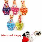 Pet Dog Diaper Sanitary Pant Reusable Washable Stay On With Suspenders 6 Size US