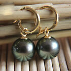 Natural 8-20mm Tahitian Black South Sea Shell Pearl Silver 14k Gold GP Earring