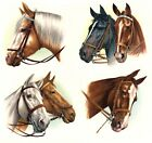 Horse Head Portrait Select-A-Size Waterslide Ceramic Decals Xx image