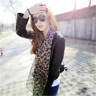 HOT~! Lady TOP QualIty Designer Stephen Sprouse Leopard Stole Scarf Silk Scraf