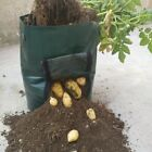 Potato Grow Planter Container Bag Pouch Root Plant Growing Pot Side Window US