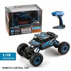 4wd rc buggy
