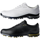 adidas Golf Mens 2018 Adipure TP Climaproof Leather Spiked 2.0 Golf Shoes