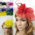 Fascinator Feather Wedding Party Pillbox Hat Headband Clip Veil Hair Accessory
