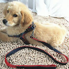 Pet Dog Puppy Chest Back Rope Strap Belt Restraint Lead Harness Leash Adjustable