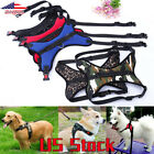 Leash Cat Pet Dog Puppy Harness Dog Soft Adjustable Harness Vest Dog Chest Strap