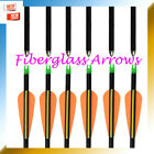 "28"" 30"" 32"" Youth Fiberglass Compound Arrows 3"" Vanes Hunting and shooting Elong"