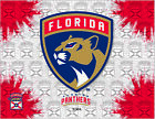 Florida Panthers HBS Gray Red Hockey Wall Canvas Art Picture Print $56.0 USD on eBay