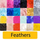 FEATHERS - Birthday Party Table Balloon Decoration Craft Soft Wedding {Oaktree}