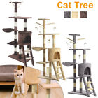 Kitten Cat Tree Scratch Post Sisal Toy Activity Centre Grey Beige Brown with Toy