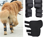 Dog Leg Knee Brace Hock Protector, Joint Wrap Heals & Prevents Injuries USA Ship